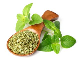 utilisation origan plante médicinale